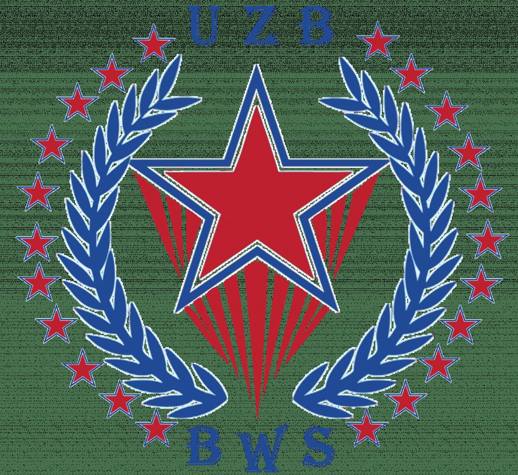 BWS.Uz logo