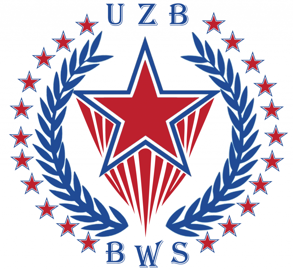 logo bws.uz